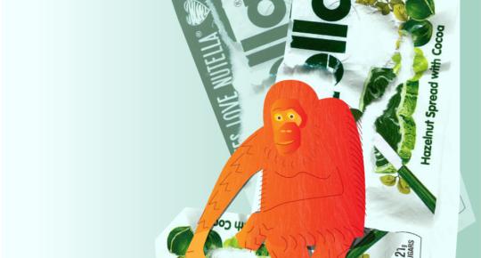 Female Orangutan by Katie Wilhoit